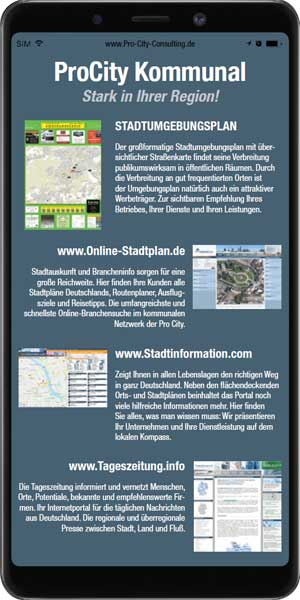 Flyer der Pro City Consulting
